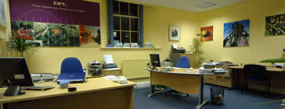 office_pic